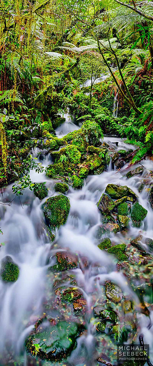 A vertical panoramic photograph of a cascade in New Zealand's fiordland. A high quality, high resolution print.<br /> <br /> Code: XZSS0001<br /> <br /> Limited Edition Print