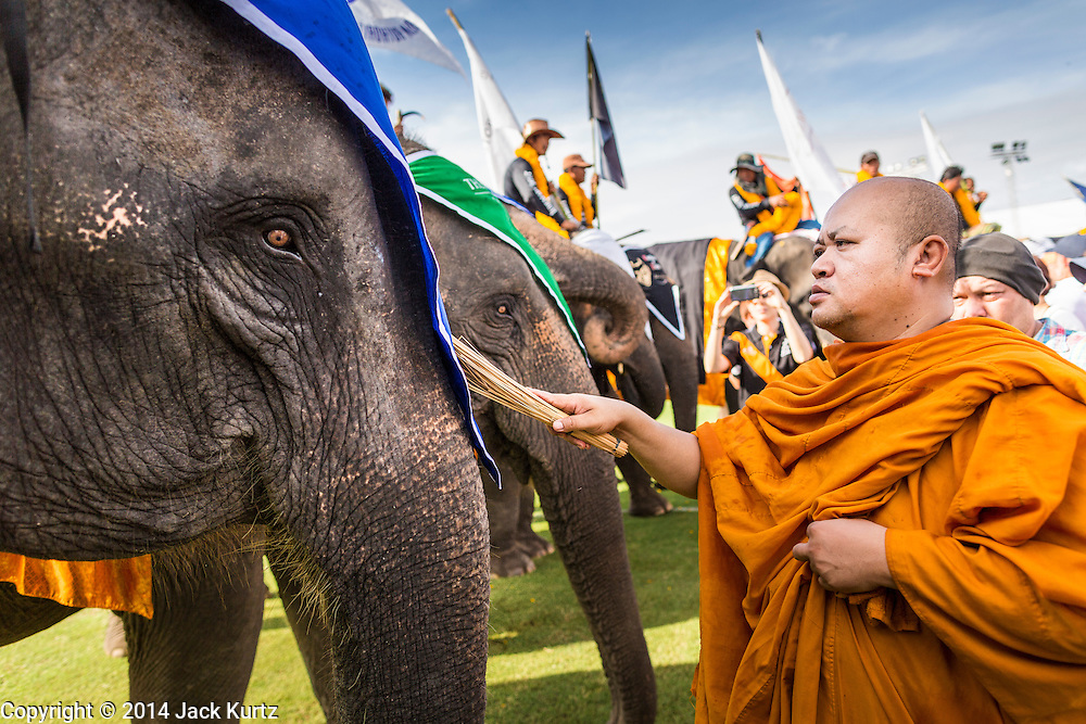 """28 AUGUST 2014 - BANGKOK, THAILAND: A Buddhist monk blesses an elephant before the King's Cup Elephant Polo Tournament at VR Sports Club in Samut Prakan on the outskirts of Bangkok, Thailand. The tournament's primary sponsor in Anantara Resorts. This is the 13th year for the King's Cup Elephant Polo Tournament. The sport of elephant polo started in Nepal in 1982. Proceeds from the King's Cup tournament goes to help rehabilitate elephants rescued from abuse. Each team has three players and three elephants. Matches take place on a pitch (field) 80 meters by 48 meters using standard polo balls. The game is divided into two 7 minute """"chukkas"""" or halves.      PHOTO BY JACK KURTZ"""