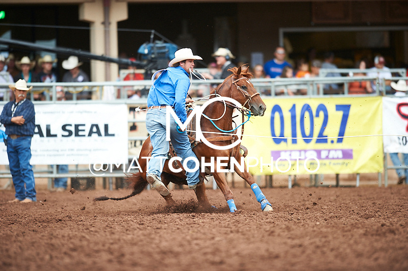 Tie-down roper Jesse Clark of Portales, NM competes at the Pikes Peak or Bust Rodeo in Colorado Springs, CO.<br /> <br /> <br /> UNEDITED LOW-RES PREVIEW<br /> <br /> <br /> File shown may be an unedited low resolution version used as a proof only. All prints are 100% guaranteed for quality. Sizes 8x10+ come with a version for personal social media. I am currently not selling downloads for commercial/brand use.