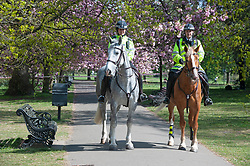 ©Licensed to London News Pictures 15/04/2020  <br /> Greenwich, UK. Mounted police on patrol in Greenwich park, Greenwich, London as people get out of the house from coronavirus lockdown to exercise for an hour. Photo credit:Grant Falvey/LNP