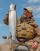 Atlantic salmon caught in Chequamegon Bay of western Lake Superior