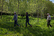 A family of two sisters and a father walk through spring woods, on 23rd April 2017, in Wrington, North Somerset, England.