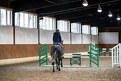 Parcours reiten<br /> Herford - Springtraining mit Lars Meyer zu Bexten 2019<br /> 16. Januar 2019<br /> © www.sportfotos-lafrentz.de/Stefan Lafrentz