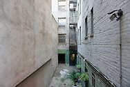 Backyard in Manhattan, New York City, USA.