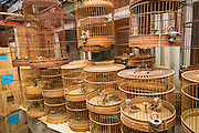 Traditional bird cages at the Bird & Insect Market in Shanghai, China