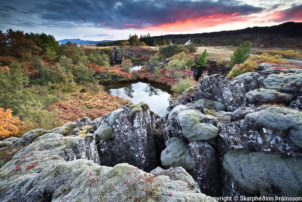 Autumn in Þingvellir national park, south-west Iceland.