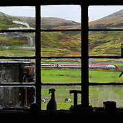 Virgin Trains on the West Coast line near Abington. .Picture Robert Perry The Scotsman 3rd Oct  2012