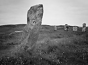 The Calanais (Callanish) Stones were constructed between 2900 and 2600 BC and stand on the west coast of the Isle of Lewis.