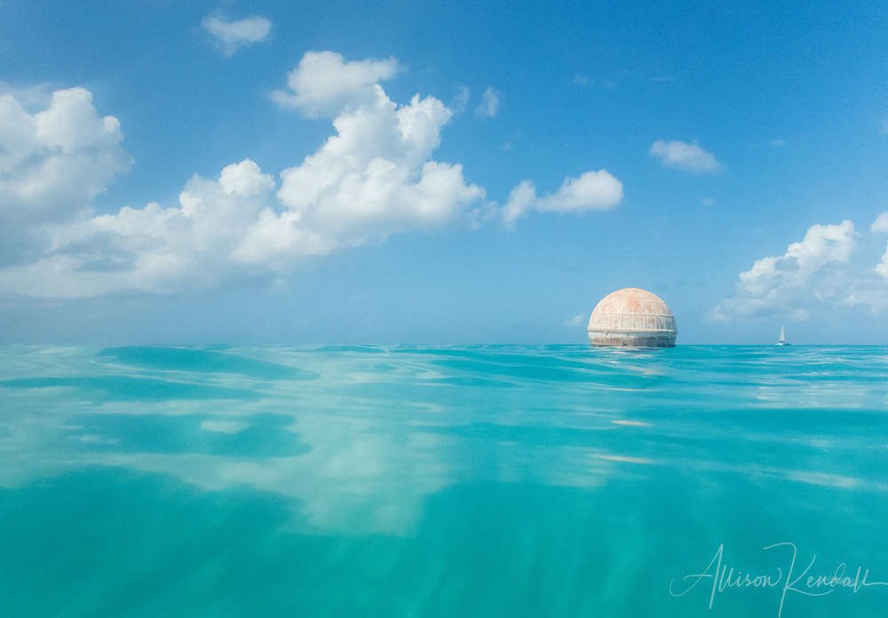 Underwater, swimming and snorkelling perspective, Barbados