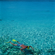 Snorkeling in caribbean. Cozumel, Q.Roo. Mexico