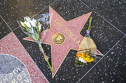 February 5, 2020, Hollywood, California, USA: Flowers rest on Hollywood icon Kirk Douglas' star on the Hollywood Walk of Fame. Douglas passed away at the age of 103-years old, Wednesday February, 5, 2020. (Credit Image: © Hans Gutknecht/Orange County Register via ZUMA Wire)