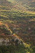Aerial view on autumn forest, Gorges du Verdon, Verdon Natural Regional Park, France