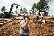"""CHILDERSBURG, AL – AUGUST 3, 2018: Rick Nelms, 57, surveys a final harvest of Loblolly Pine on a tract located 50 miles outside of Birmingham. <br /> <br /> Nelms, a private forestry consultant, is hired by landowners, appraisers and banking institutions alike to evaluate and oversee timber harvests, which supply the raw material needed by various mills in the region to create everything from paper products and furniture to telephone poles and plywood. """"We can grow timber pretty fast down here to supply the demand for wood fiber,"""" Nelms said. """"The big problem with Southern Yellow Pine though is there's not enough competition for it. There's too much supply for the demand."""" Nelms, who has been working in the industry for over thirty years, says landowners used to get $500 for an acre of """"thinning"""" –the partial removal of timber intended to improve the growth and value of the residual stand. """"Now, it's around $150 per acre,"""" Nelms said. """"The trouble is it's 15 years before you know if it's a good idea or not. So as soon as that tree hits the ground it gets complicated in a hurry. Years ago, it was a pretty good investment. Now people just don't want to do it. And some people are hung, because that's all they got."""" CREDIT: Bob Miller for The Wall Street Journal<br /> TIMBER_AL"""