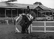 """07/08/1980<br /> 08/07/1980<br /> 07 August 1980<br /> R.D.S. Horse Show: John Player Top Score Competition, Ballsbridge, Dublin.  David Broome (Great Britain) on """"Queenway Sportsman""""."""