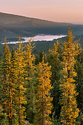 Red Fir, White Pine and Lassen Back-country with Snag Lake and Cinder Cone in the Distance, Lassen Volcanic National Park, California