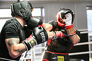 Boxen: 1. Bundesliga, Hamburg Giants, Hamburg, 13.02.2017<br /> Pressetraining zur Kooperation mit dem Hamburger Profi-Boxstall EC Boxing:<br /> Igor Mikhalkin (EC Boxing)<br /> © Torsten Helmke