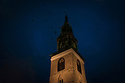 November evening, rooks circle the steeple of St. Marienkirche, the Lutheran Saint Mary's Church, the oldest church in Berlin, Karl-Liebknecht-Strasse, Berlin.