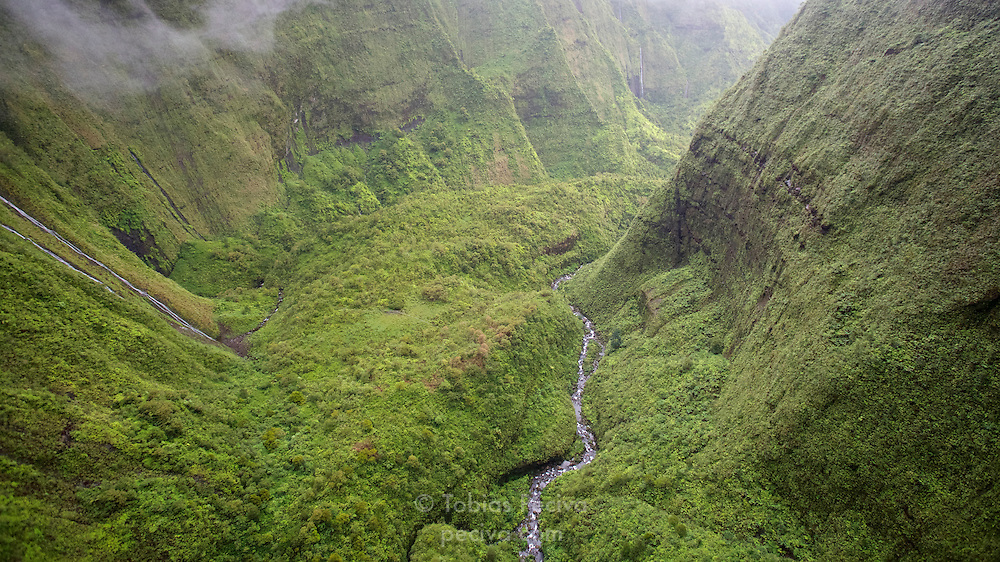 Aerial view of lush greenery inside the crater of Mount Waialeale, on the island of Kauai, Hawaii.