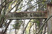 Signpost leading to Druids Grove. Norbury Park, Surrey, UK.
