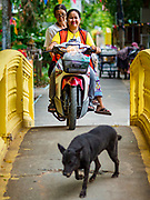 02 AUGUST 2018 - PAK KRET, NONTHABURI, THAILAND: Motorcycle taxi crosses a bridge over a small stream on Ko Kret. Ko Kret (also spelled Koh Kret) is a small island in the Chao Phraya River in Nonthaburi province north of Bangkok. It is about 2 km long and 1 km wide. It has seven main villages, the largest and most populous being Ban Mon. Ko Kret was created in 1722 when a canal was dug in the Chao Phraya River to bypass a bend. Most of the people on the island are ethnically Mon, from the hills of western Thailand and eastern Myanmar (Burma). The island is popular as a weekend daytrip from Bangkok. The island is famous for the Mon style pottery made on the island.      PHOTO BY JACK KURTZ
