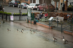 © Licensed to London News Pictures. 05/02/2021. Sonning, UK. Members of the public sit by the riverside where the River Thames has broken it's banks at Henley-On-Thames, Oxofrdshire.  Large parts of the UK experience more wet conditions which is expected to bring further flooding. Photo credit: Ben Cawthra/LNP