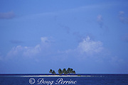 Rendezvous Caye, a tiny islet on the Barrier Reef of <br /> Belize, Central America ( Caribbean Sea)