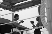 Ali vs Lewis Fight, Croke Park,Dublin.<br /> 1972.<br /> 19.07.1972.<br /> 07.19.1972.<br /> 19th July 1972.<br /> As part of his built up for a World Championship attempt against the current champion, 'Smokin' Joe Frazier,Muhammad Ali fought Al 'Blue' Lewis at Croke Park,Dublin,Ireland. Muhammad Ali won the fight with a TKO when the fight was stopped in the eleventh round.<br /> <br /> Image of two tired fighters.