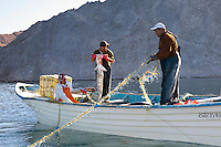 Gill net fishermen pull in their catch including a hammerhead shark in Kino Bay, Mexico.
