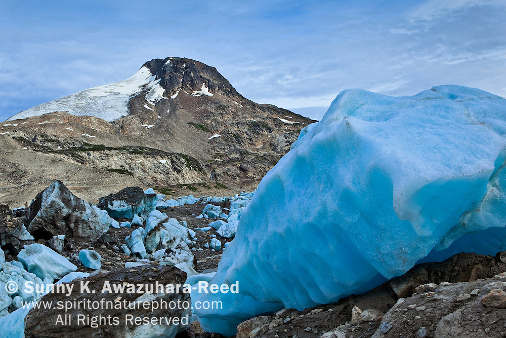 Stranded Iceberg, Iceberg Lake Valley, Wrangell - St. Elias Park, Alaska