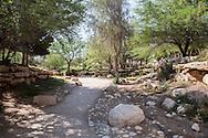 Il Kibbutz Sde Boker, Israele