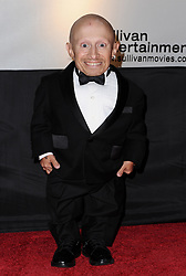 File photo - Verne Troyer attends the first Cinema Against AIDS Toronto to benefit amfAR, The Foundation for AIDS Research and Dignitas International. Toronto, Canada on September 15, 2009. Verne Troyer, who is best known for playing Mini-Me in the Austin Powers films, has died at the age of 49. Troyer, who was 81cm tall, also played Griphook in the first Harry Potter film. Photo by Lionel Hahn/ABACAPRESS.COM (Pictured: Verne Troyer)