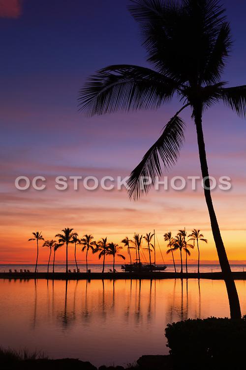 Kuu Alii Fishpond at Wiakoloa Beach Hawaii