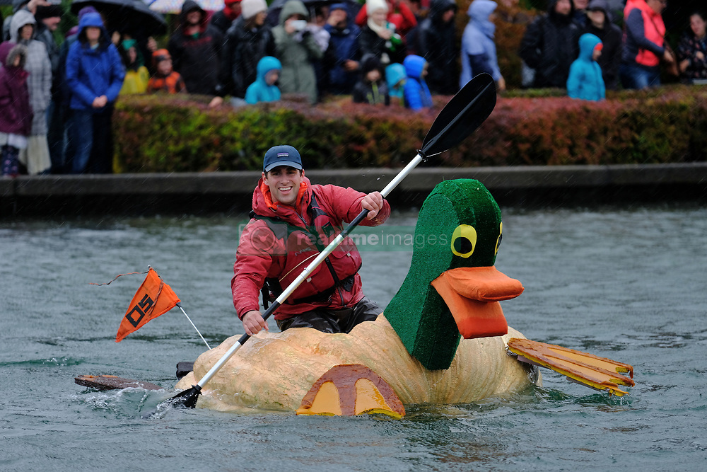 A man races a duck-decorated pumpkin across Lake of the Commons at the 14th annual West Coast Giant Pumpkin Regatta in Tualatin, Ore. on October 21, 2017. (Photo by Alex Milan Tracy)