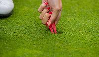 NUNSPEET - pitchmark, pitchfork, Golf op Rijk van Nunspeet.   COPYRIGHT KOEN SUYK