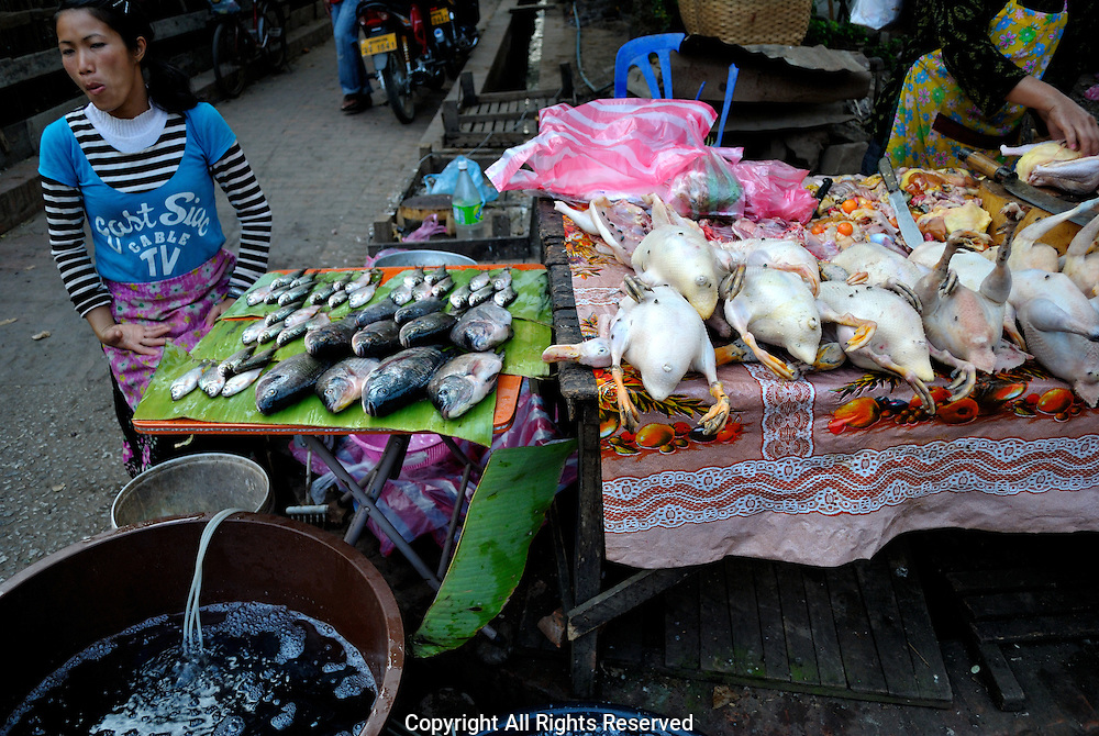 Fowl and fish for sale