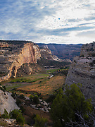 Morning at Castle Park Overlook along the Yampa River, Dinosaur National Monument, Colorado, USA.