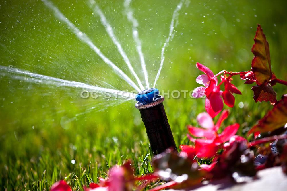 Landscape Water Sprinklers