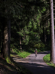 Man riding racing bicycle on cycling tour in the Northern Black Forest, Germany