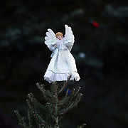 An angel on top of a Christmas tree in Sandy Hook after yesterday's shootings at Sandy Hook Elementary School, Newtown, Connecticut, USA. 15th December 2012. Photo Tim Clayton