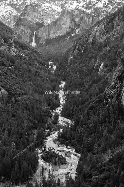 Winter in Yosemite Falls, which drains into the Merced River, Yosemite National Park, Black and White