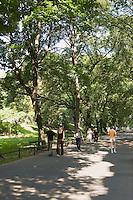 Planty city park in the old town Stare Miasto Krakow Poland