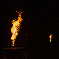 Electric Woods presents the Spirit of the Orient performance at Robin Hill Country Park, Isle of Wight.