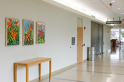 Yale-New Haven Health Park Avenue Medical Center. Architect: Shepley Bulfinch. Contractor: Gilbane Building Company, Glastonbury, CT. James R Anderson Photography, New Haven CT photog.com. Date of Photograph 4 May 2016  Submission 25  © James R Anderson. Art Work, First Floor.