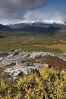 View along Rapadalen towards Lulep Spadnek from Nammajs, Sarek National Park, Laponia World Heritage Site, Sweden