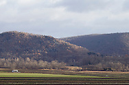 Pine Islandg\, New York - Views of the Black Dirt farming region in Orange County on Nov. 24. 2013.