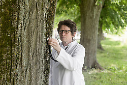 Female doctor checking the health of tree, Freiburg im Breisgau, Baden-Wuerttemberg, Germany