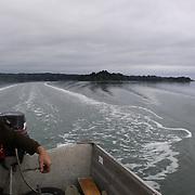Orca 2011