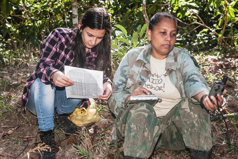 Research team for golden lion tamarins  (Leontopithecus rosalia) ,Brasil, South America