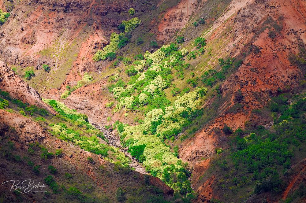 Waimea Canyon, Waimea Canyon State Park, Island of Kauai, Hawaii