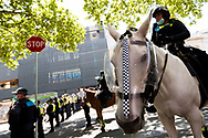 A police horse is seen during the Melbourne Freedom Rally at Parliament House. Police move into position on the steps of state parliament ahead of a planed protest. The groups who have organised the many Freedom Day protests over the last 3 months, attempted to march on State Parliament during Melbourne Cup Day demanding the sacking of Premier Daniel Andrews for the lockdown and attacks on their civil liberties. Police met with the protester's with significant force despite the city having had zero cases for five days. (Photo by Dave Hewison/Speed Media)